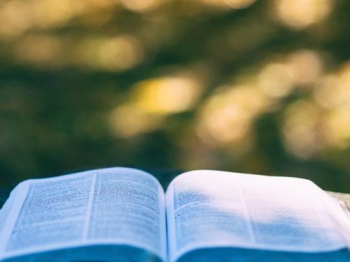 Mein Evangelium – was tut das mit mir?